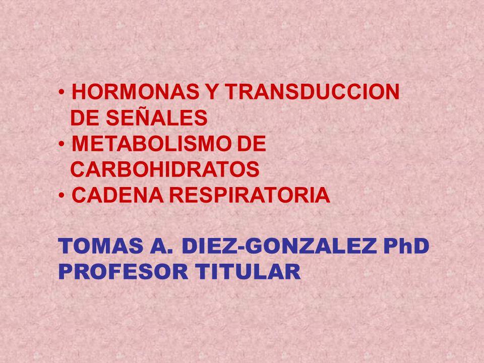HORMONAS Y TRANSDUCCION