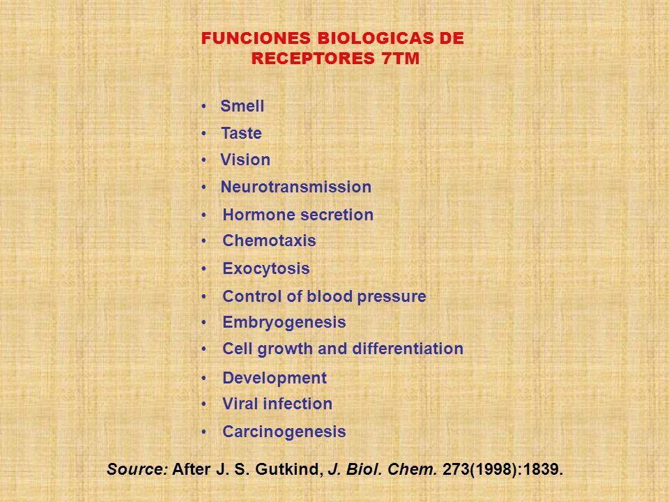 Source: After J. S. Gutkind, J. Biol. Chem. 273(1998):1839.