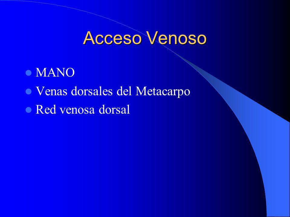 Acceso Venoso MANO Venas dorsales del Metacarpo Red venosa dorsal