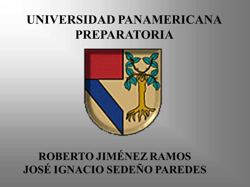 UNIVERSIDAD PANAMERICANA JOSÉ IGNACIO SEDEÑO PAREDES