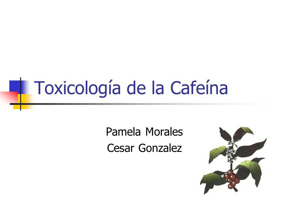 Toxicología de la Cafeína