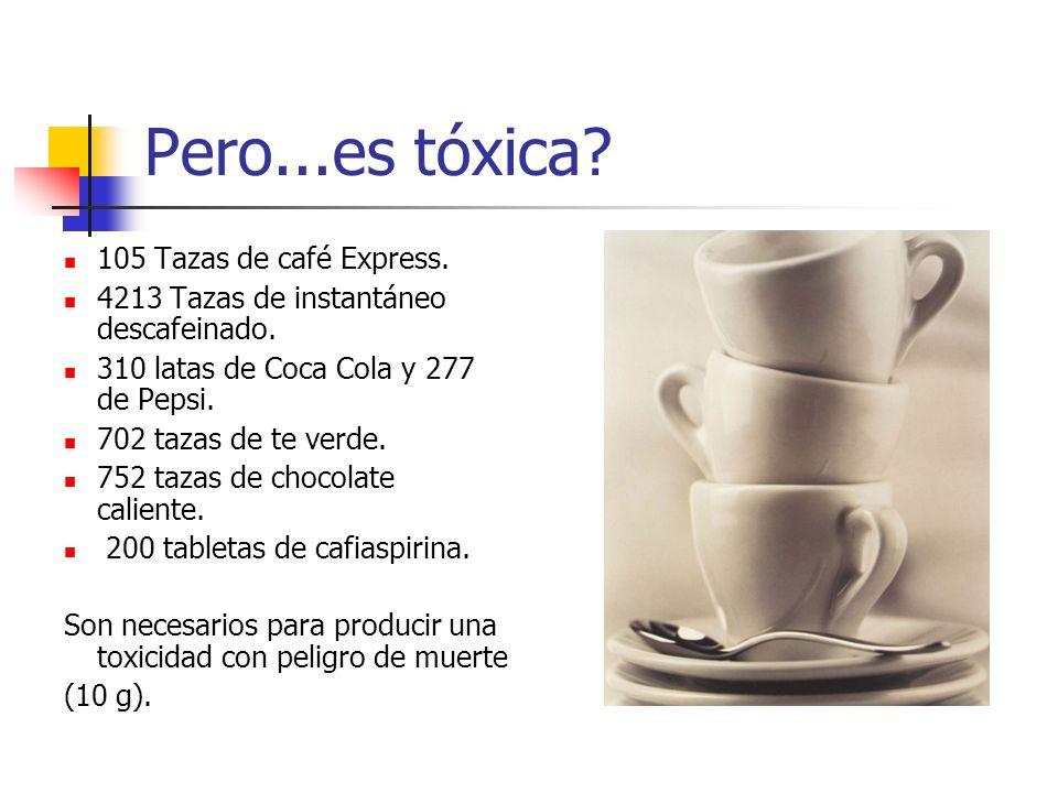 Pero...es tóxica 105 Tazas de café Express.