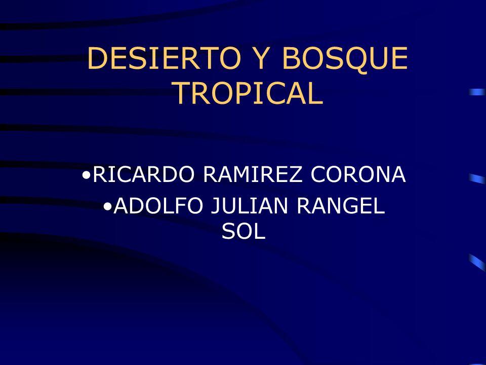 DESIERTO Y BOSQUE TROPICAL