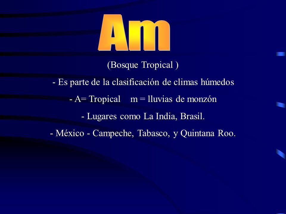 Am (Bosque Tropical ) - Es parte de la clasificación de climas húmedos