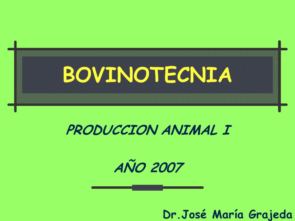PRODUCCION ANIMAL I AÑO 2007