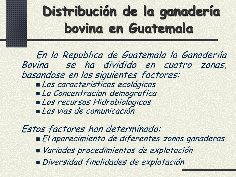 Distribución de la ganadería bovina en Guatemala