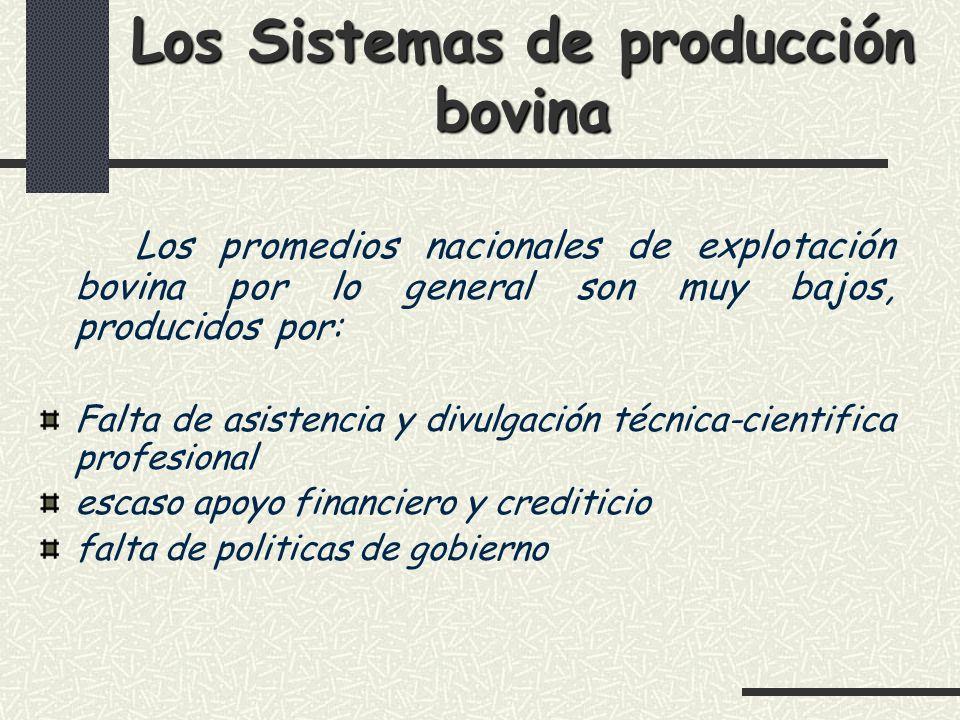 Los Sistemas de producción bovina