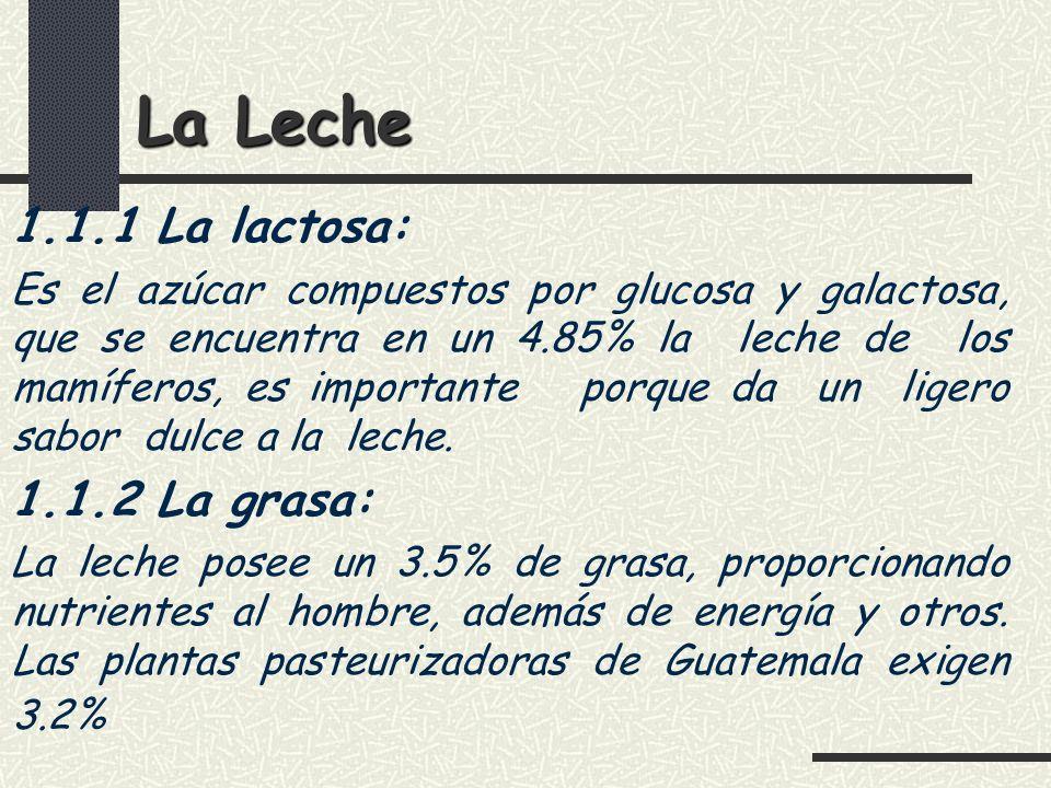 La Leche 1.1.1 La lactosa: 1.1.2 La grasa: