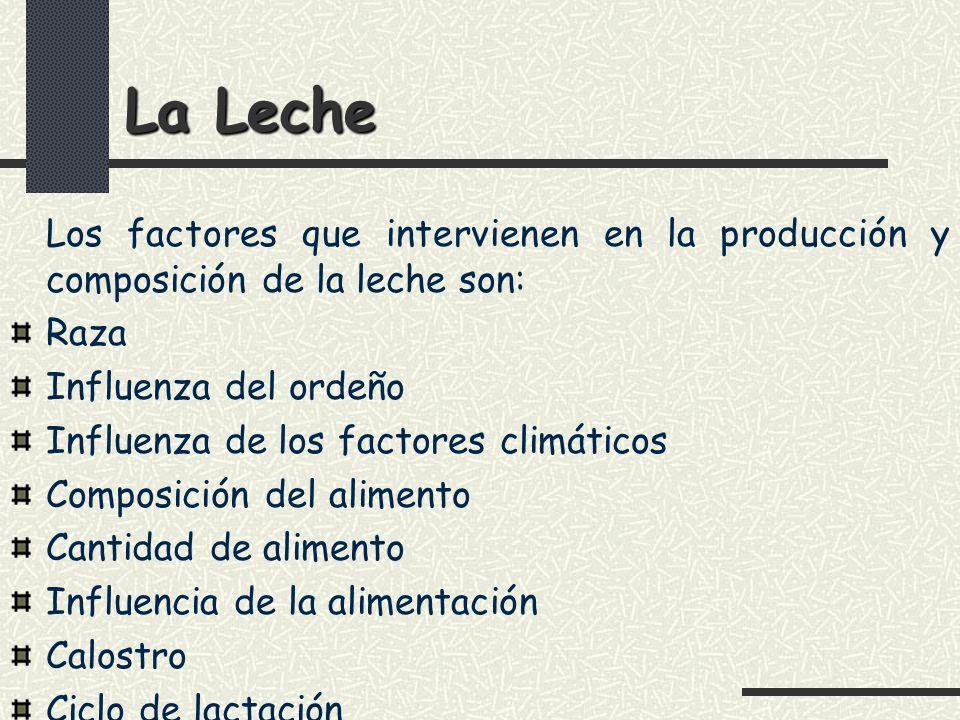 La Leche Los factores que intervienen en la producción y composición de la leche son: Raza. Influenza del ordeño.
