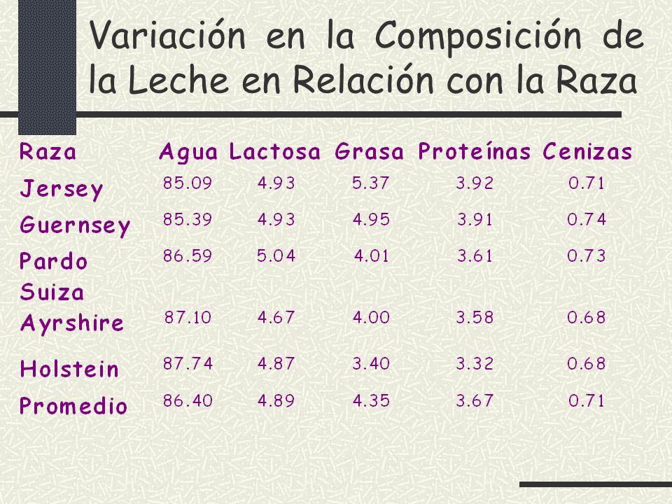 Variación en la Composición de la Leche en Relación con la Raza