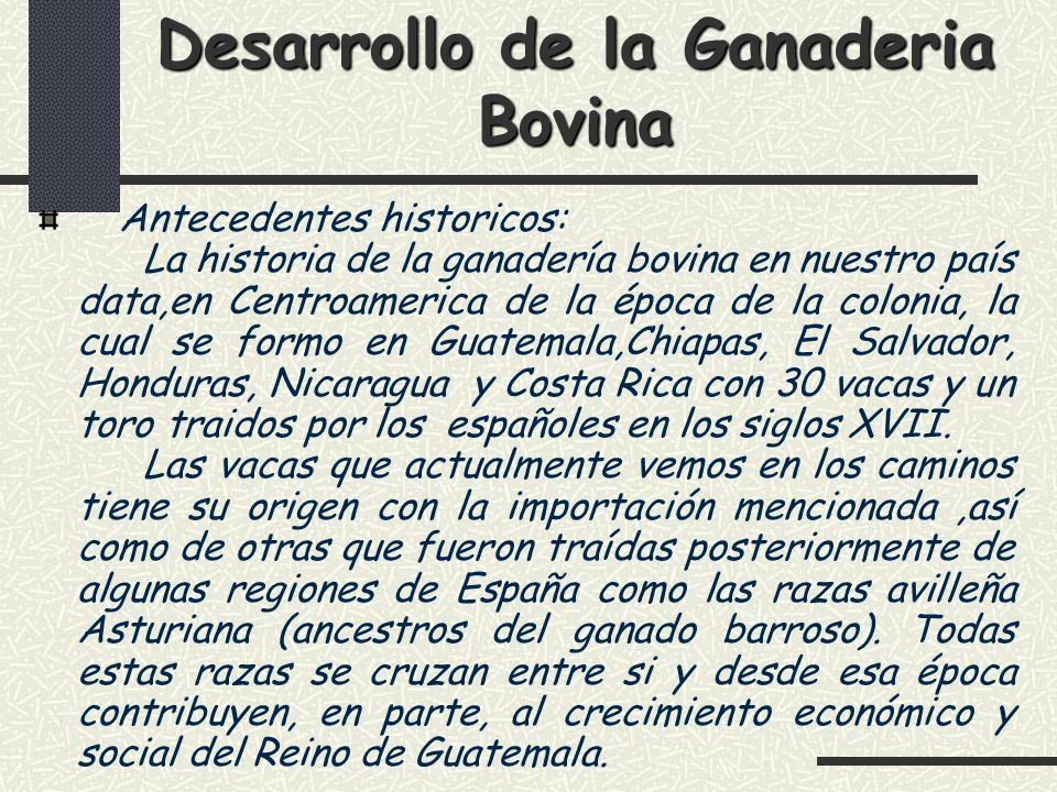 Desarrollo de la Ganaderia Bovina
