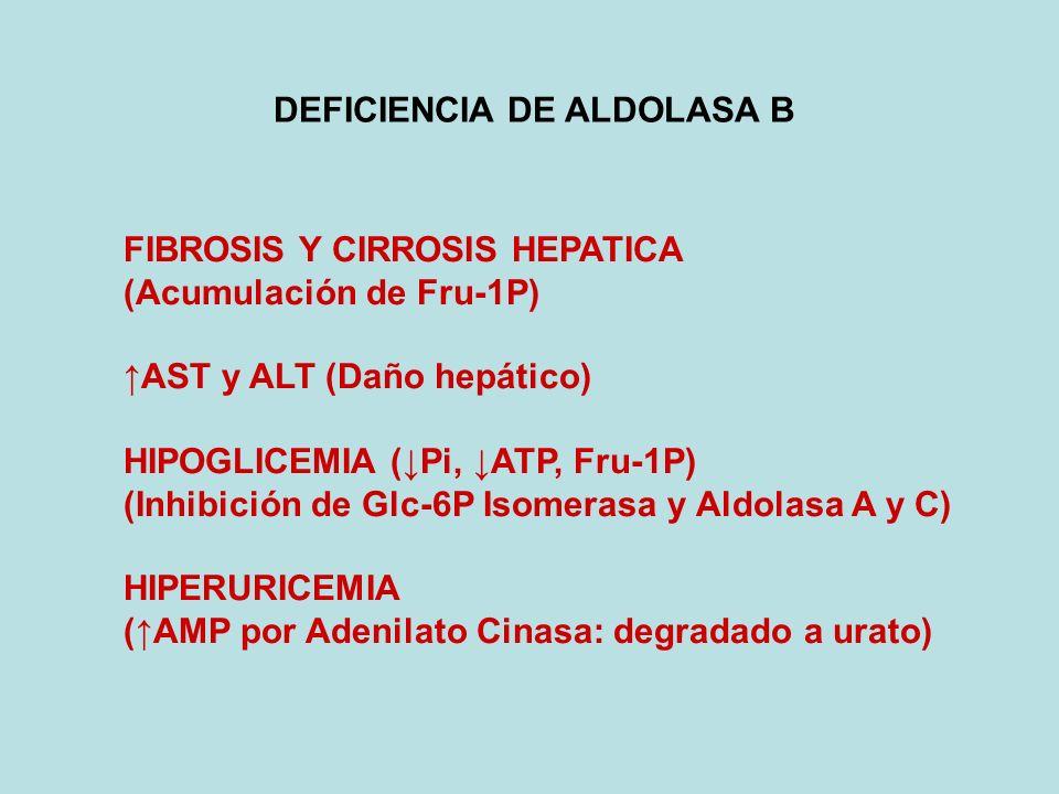 DEFICIENCIA DE ALDOLASA B