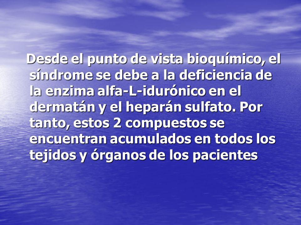 Desde el punto de vista bioquímico, el síndrome se debe a la deficiencia de la enzima alfa-L-idurónico en el dermatán y el heparán sulfato.