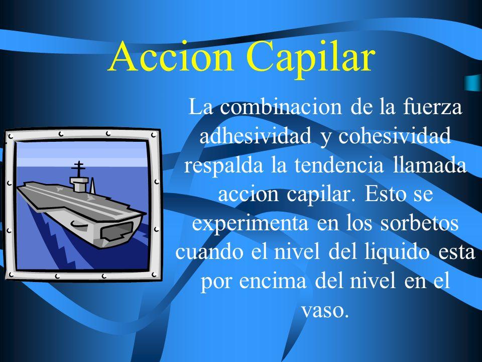 Accion Capilar