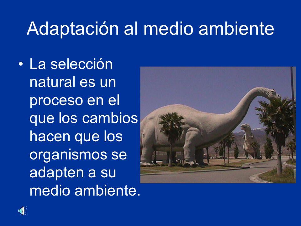 Adaptación al medio ambiente