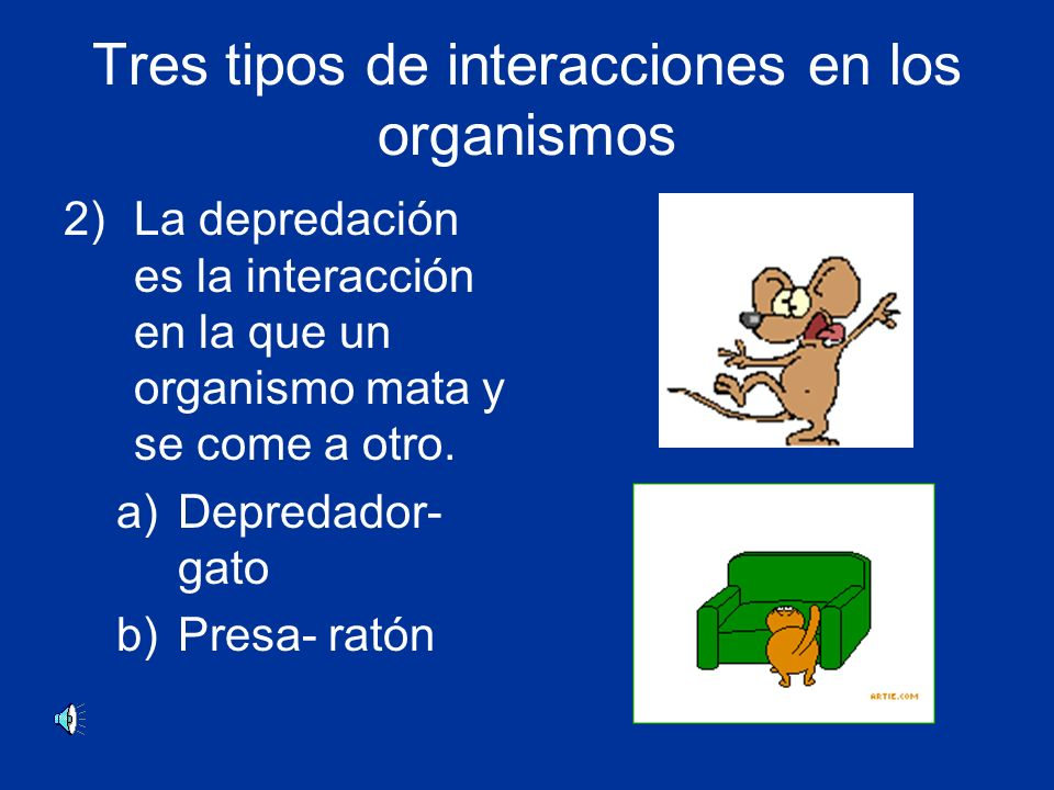Tres tipos de interacciones en los organismos