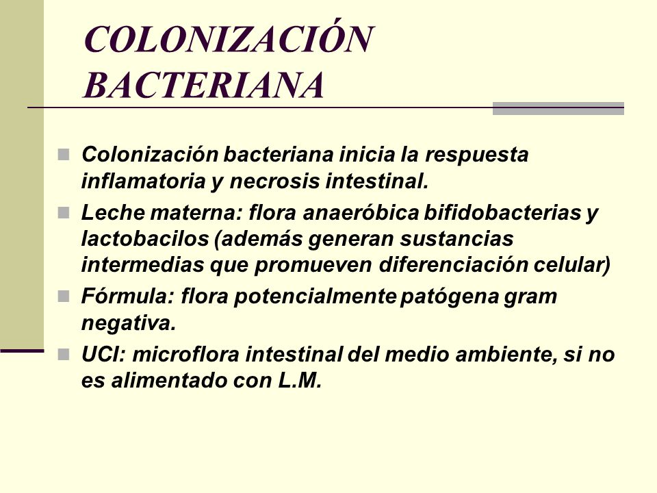 COLONIZACIÓN BACTERIANA