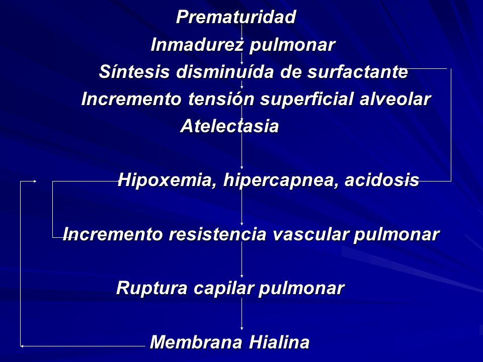Prematuridad Inmadurez pulmonar Síntesis disminuída de surfactante