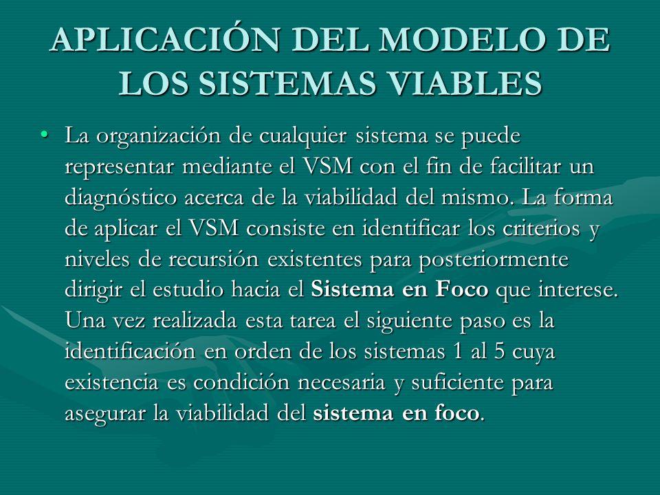 APLICACIÓN DEL MODELO DE LOS SISTEMAS VIABLES