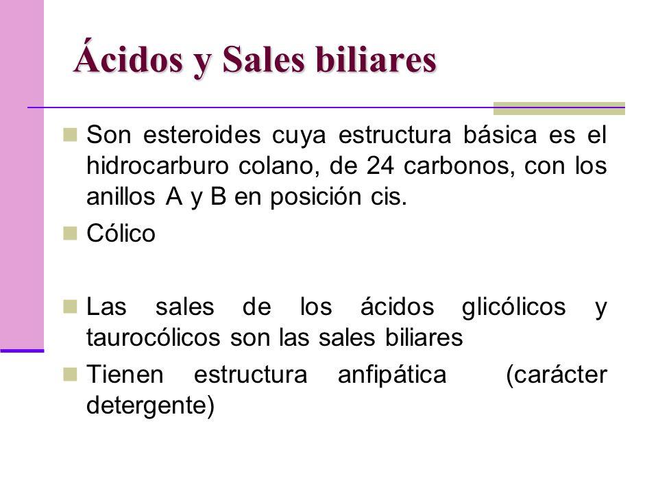 Ácidos y Sales biliares