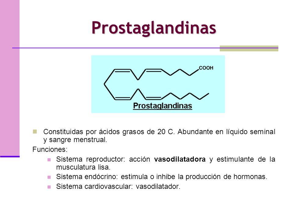 Prostaglandinas Constituidas por ácidos grasos de 20 C. Abundante en líquido seminal y sangre menstrual.