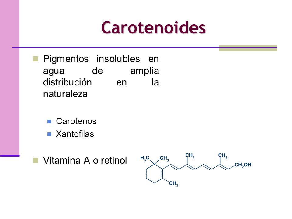 CarotenoidesPigmentos insolubles en agua de amplia distribución en la naturaleza. Carotenos. Xantofilas.