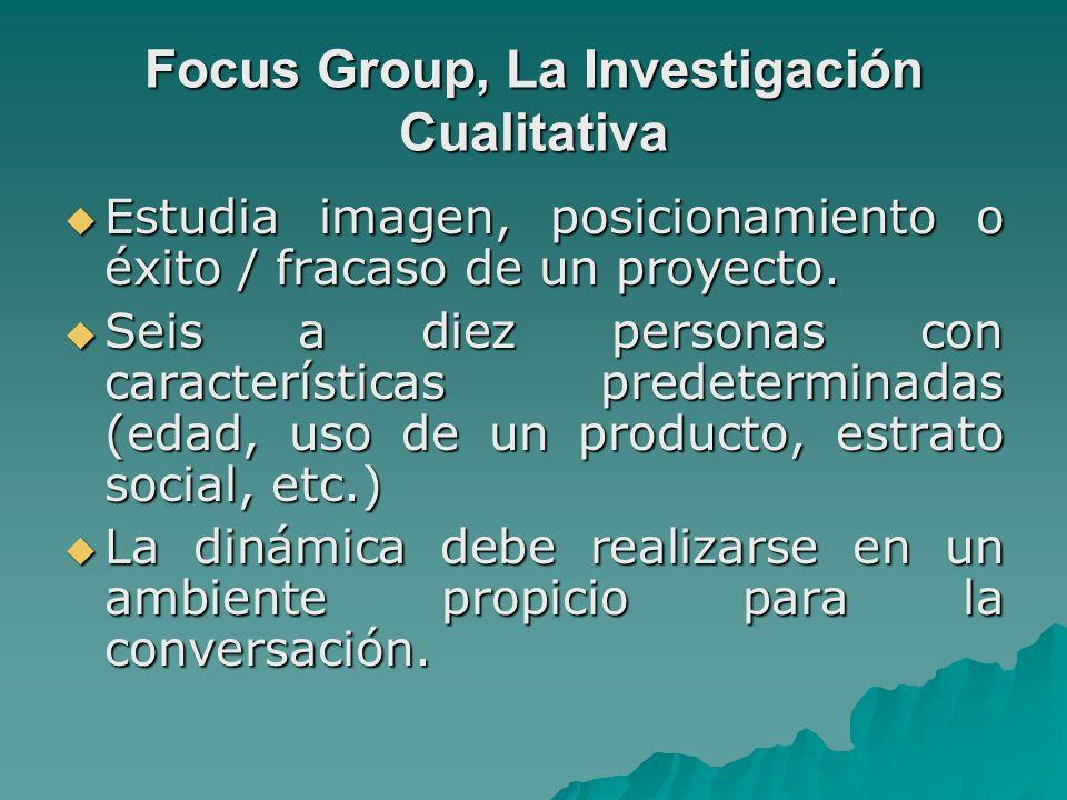 Focus Group, La Investigación Cualitativa