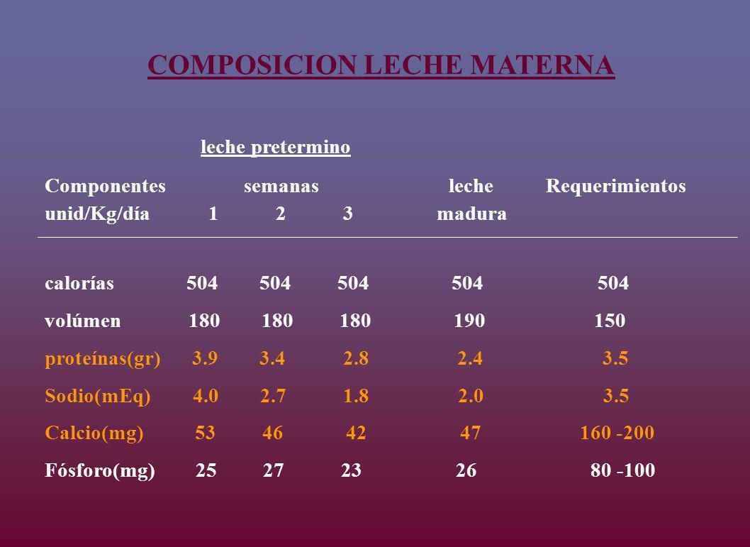 COMPOSICION LECHE MATERNA