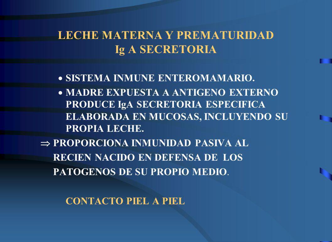 LECHE MATERNA Y PREMATURIDAD Ig A SECRETORIA
