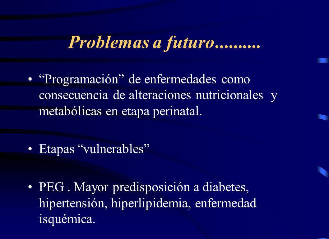Problemas a futuro.......... Programación de enfermedades como consecuencia de alteraciones nutricionales y metabólicas en etapa perinatal.