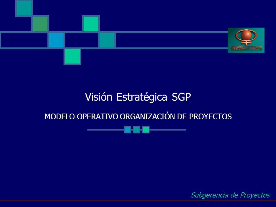 Visión Estratégica SGP MODELO OPERATIVO ORGANIZACIÓN DE PROYECTOS
