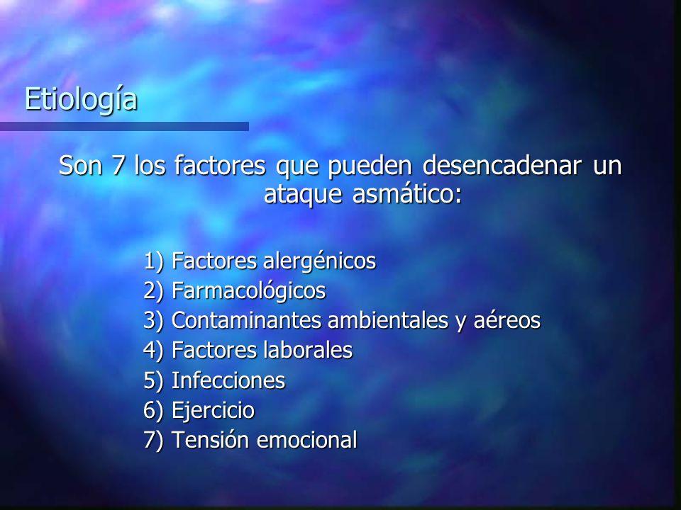 Son 7 los factores que pueden desencadenar un ataque asmático: