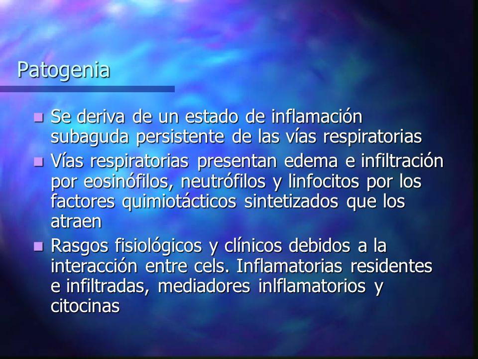 Patogenia Se deriva de un estado de inflamación subaguda persistente de las vías respiratorias.