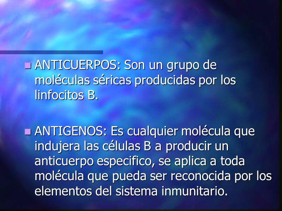 ANTICUERPOS: Son un grupo de moléculas séricas producidas por los linfocitos B.
