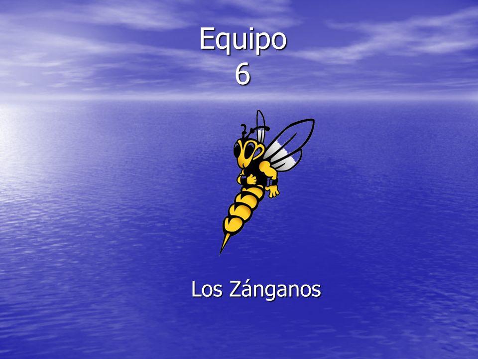 Equipo 6 Los Zánganos