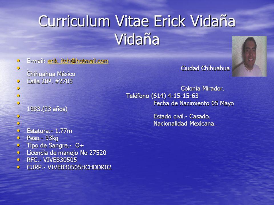 Curriculum Vitae Erick Vidaña Vidaña