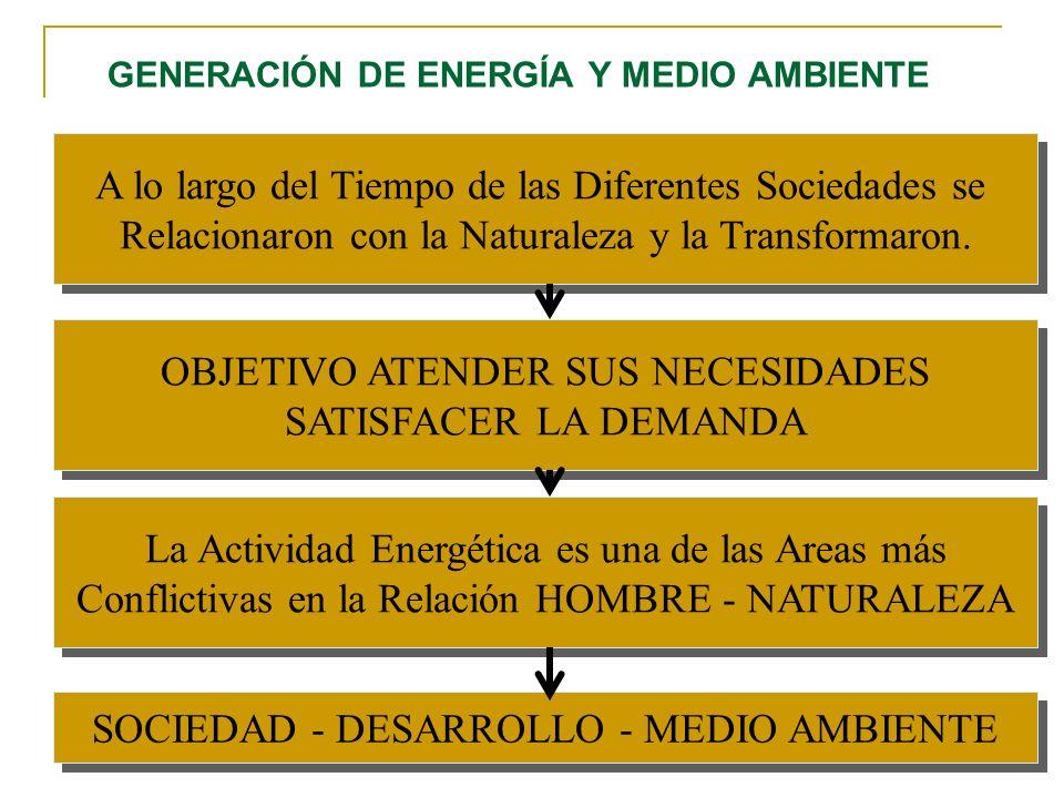 GENERACIÓN DE ENERGÍA Y MEDIO AMBIENTE