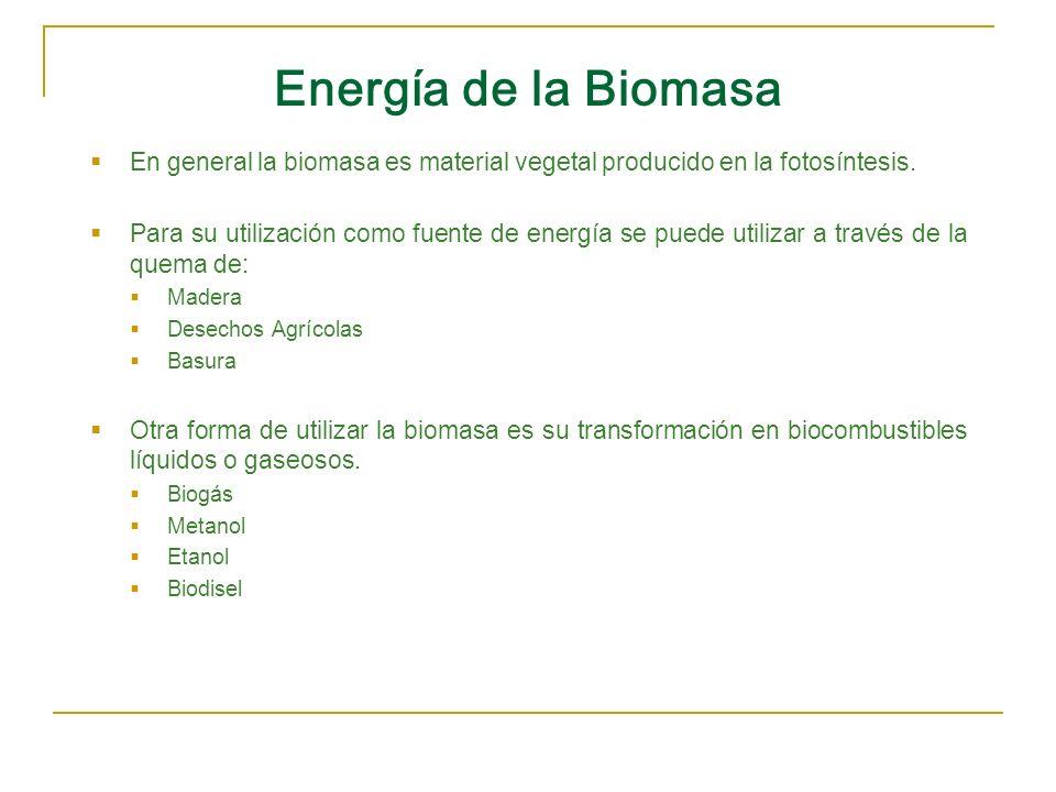 Energía de la BiomasaEn general la biomasa es material vegetal producido en la fotosíntesis.