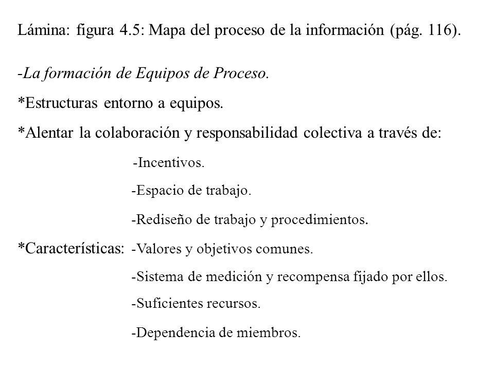 Lámina: figura 4.5: Mapa del proceso de la información (pág. 116).