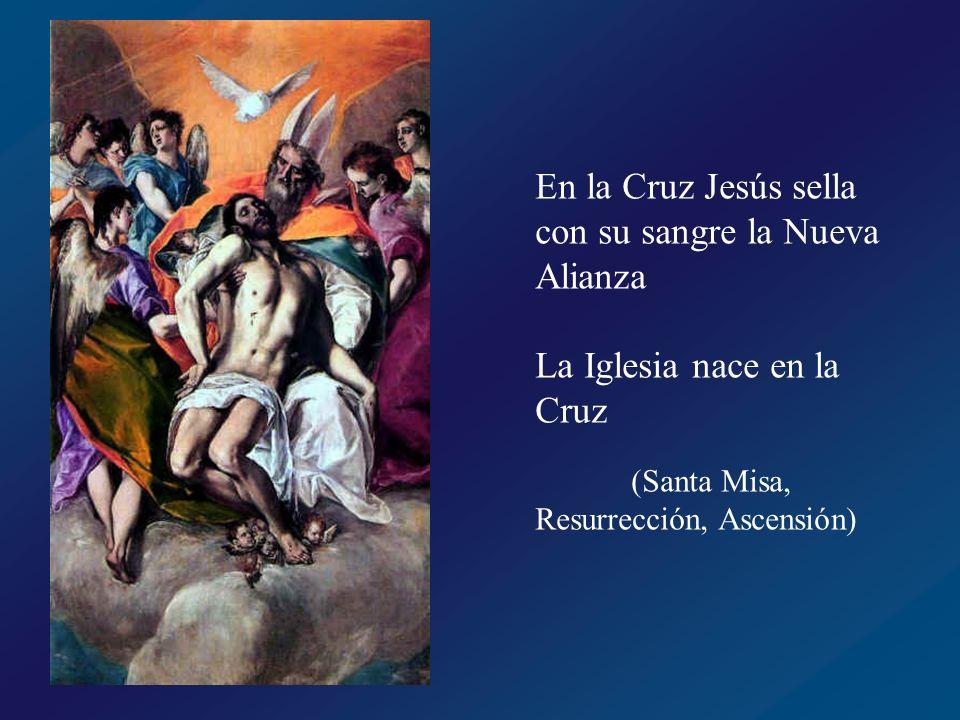 En la Cruz Jesús sella con su sangre la Nueva Alianza