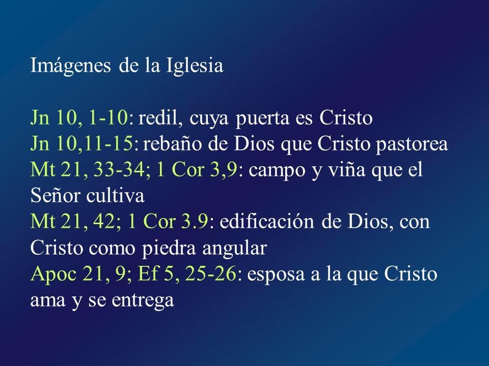 Imágenes de la Iglesia Jn 10, 1-10: redil, cuya puerta es Cristo. Jn 10,11-15: rebaño de Dios que Cristo pastorea.