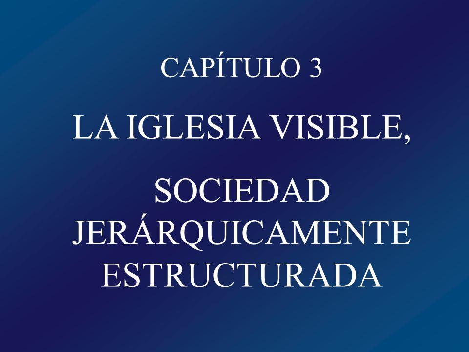 SOCIEDAD JERÁRQUICAMENTE ESTRUCTURADA