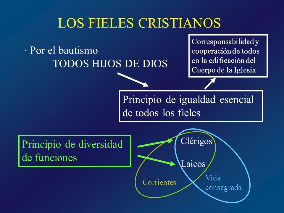 LOS FIELES CRISTIANOS · Por el bautismo TODOS HIJOS DE DIOS