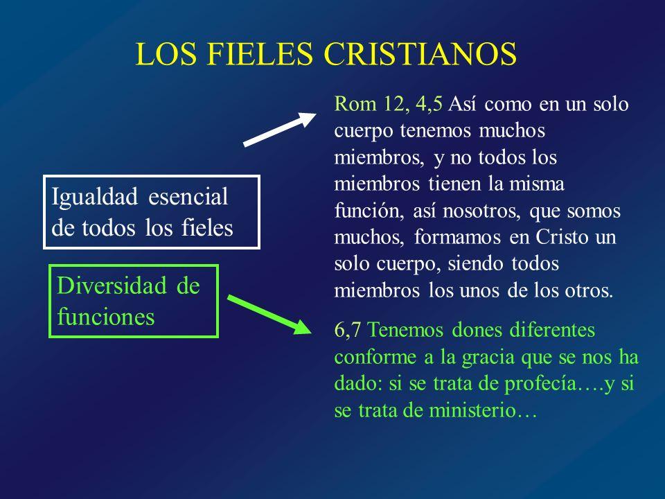 LOS FIELES CRISTIANOS Igualdad esencial de todos los fieles