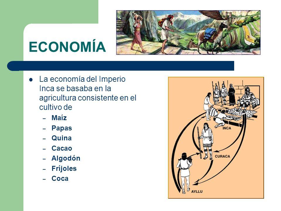 ECONOMÍA La economía del Imperio Inca se basaba en la agricultura consistente en el cultivo de. Maíz.