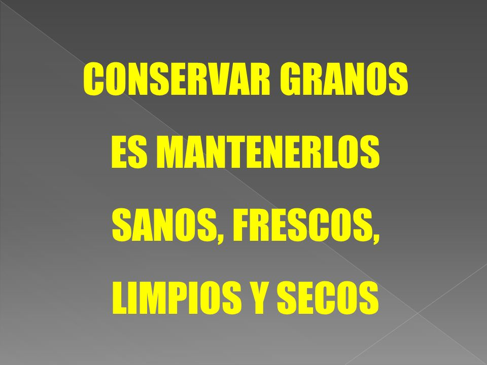 CONSERVAR GRANOS ES MANTENERLOS SANOS, FRESCOS, LIMPIOS Y SECOS