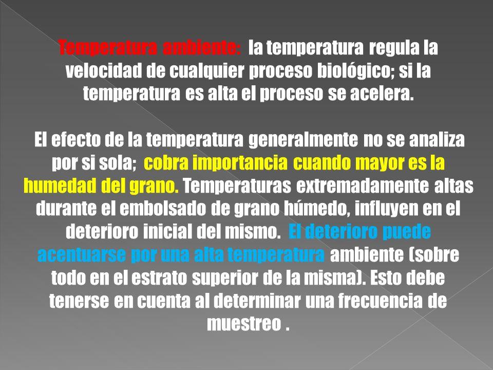 Temperatura ambiente: la temperatura regula la velocidad de cualquier proceso biológico; si la temperatura es alta el proceso se acelera.