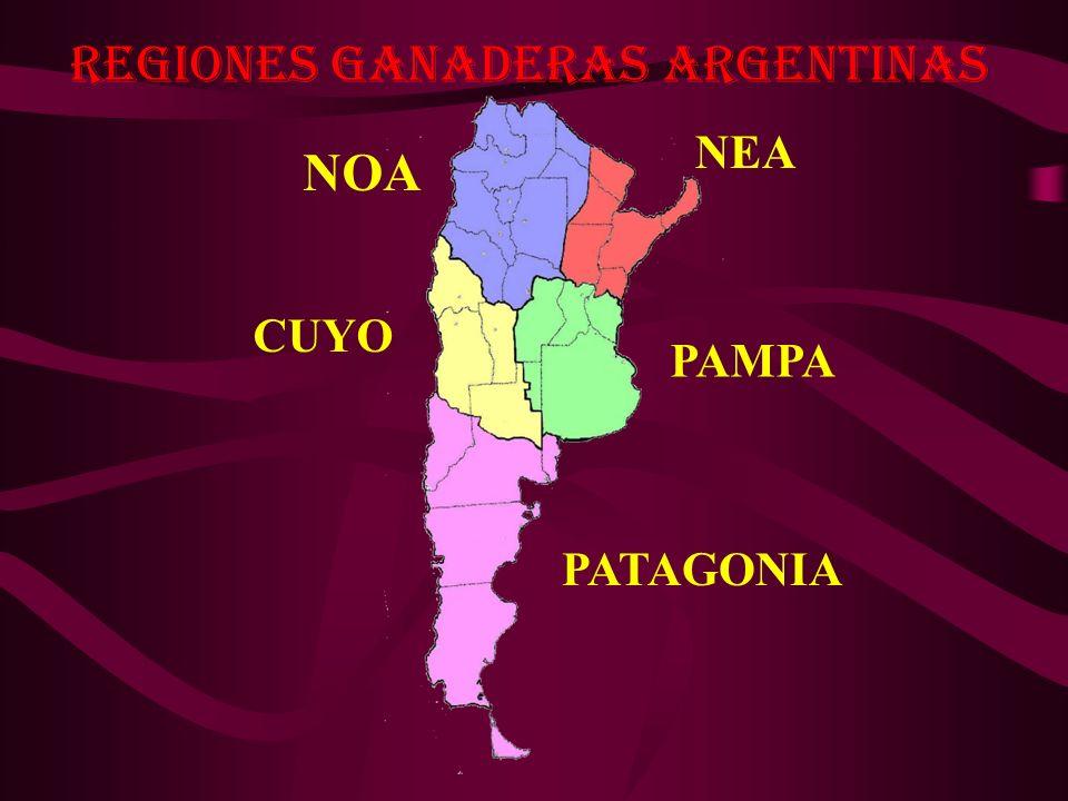 Regiones Ganaderas Argentinas