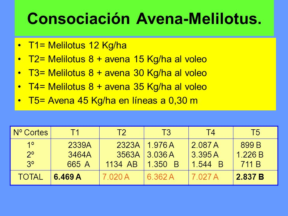 Consociación Avena-Melilotus.