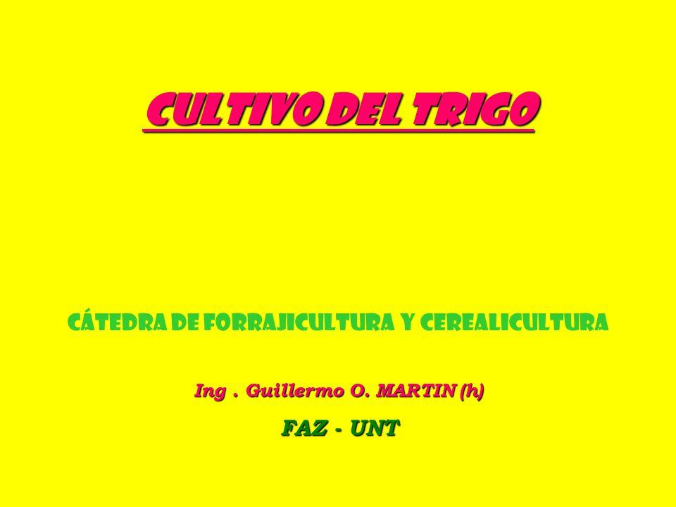 Ing . Guillermo O. MARTIN (h)